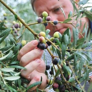 20 B Agribusiness Cover Jason Shaw